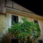 Sevilla Night Orange Tree