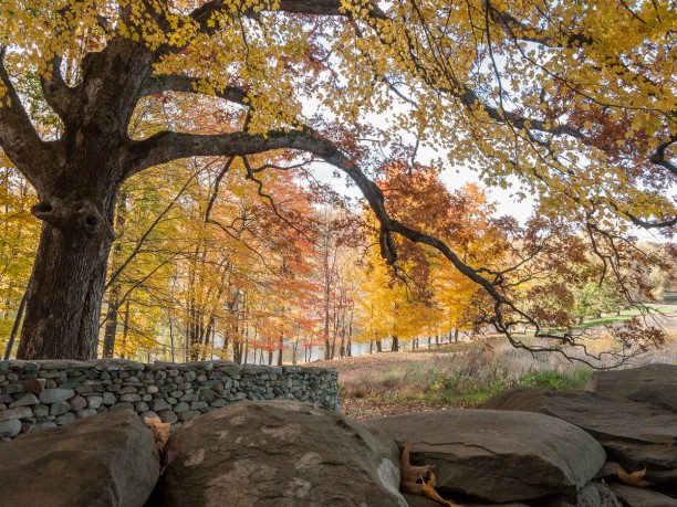 Andy Golsworthy's Wall, Storm King