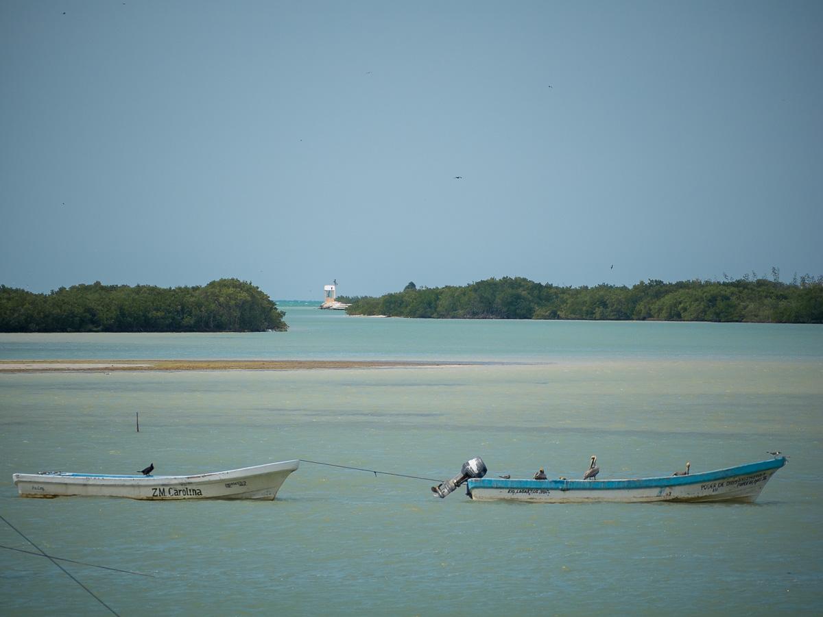 Boats in Rio Lagartos
