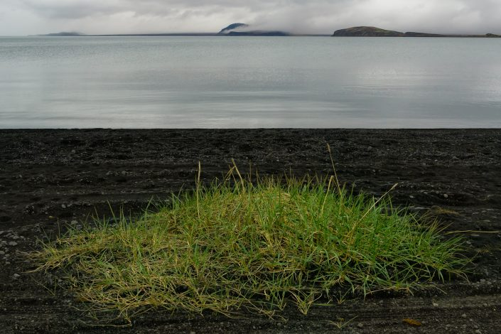 The shores of Thingvallavatn